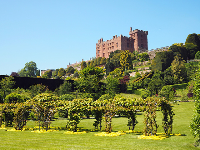 Powis Castle Terrace and Gardens