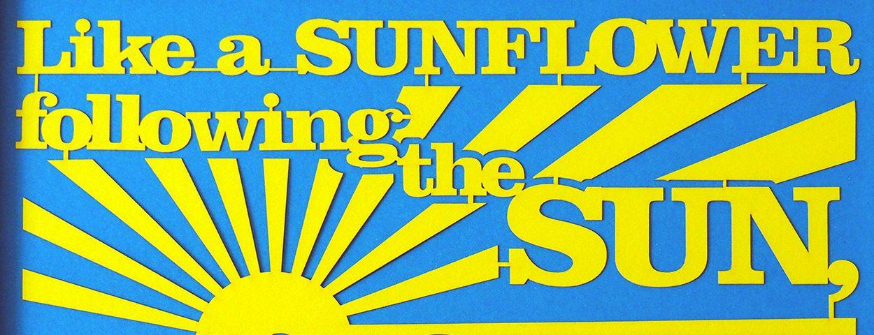 Papercuts: Like a sunflower…