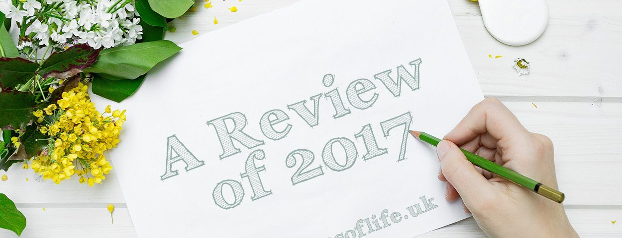 A Review of 2017