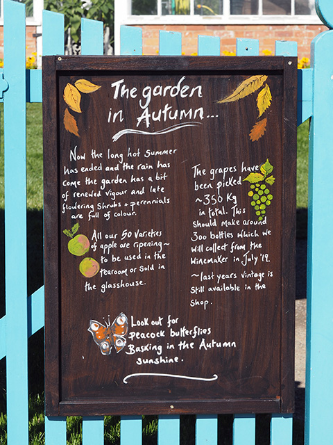 The garden in the autumn sign.
