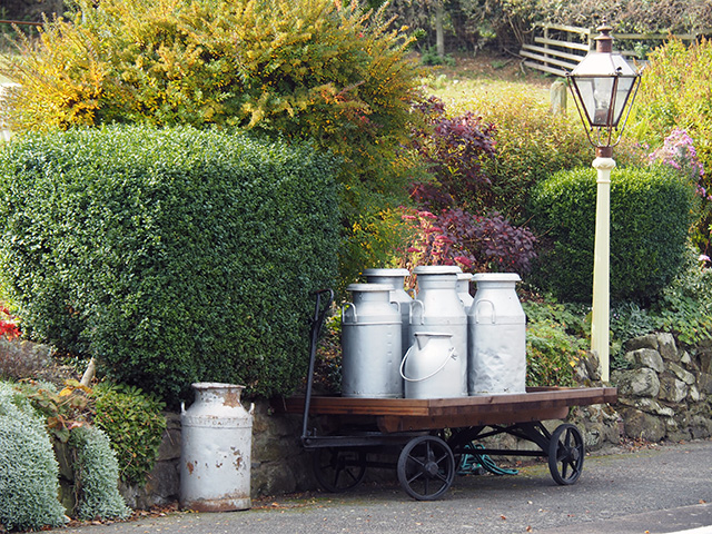 Milk churns on Carrog station platform.