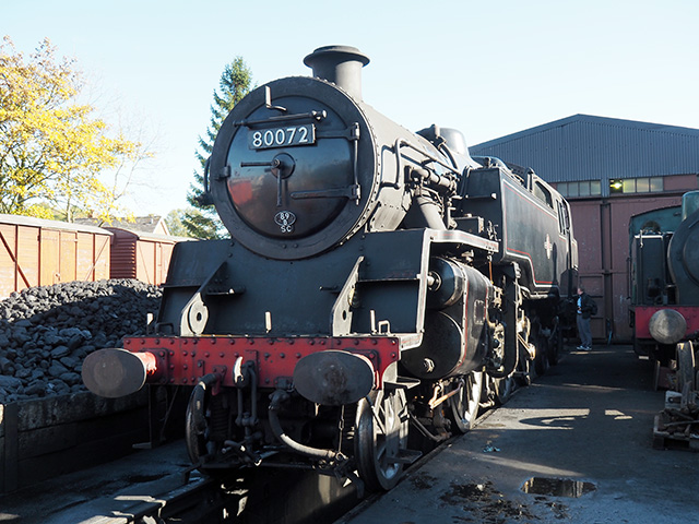 A steam train in the engine yard.