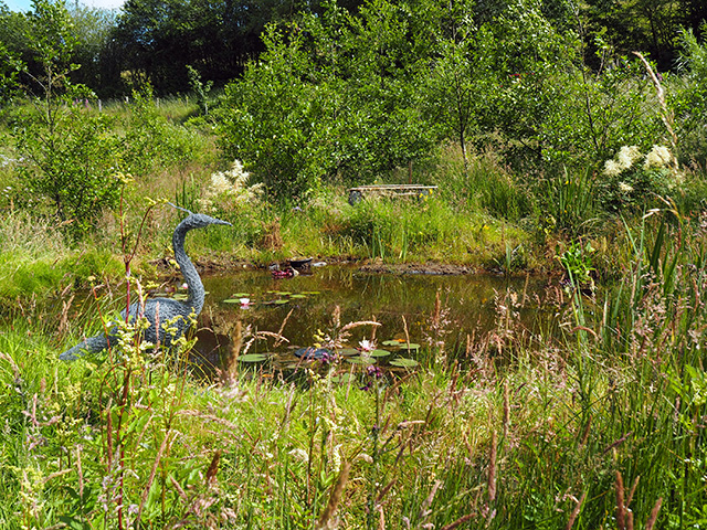 The wildlife pond.