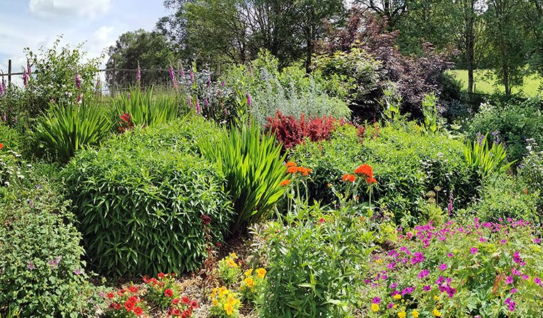 An afternoon out with the National Garden Scheme