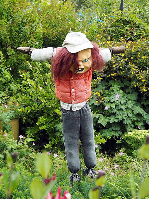 """""""Chucky"""" the Scarecrow!"""