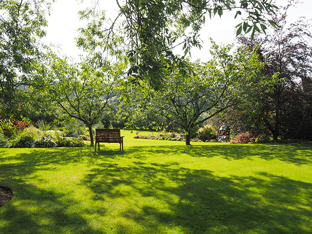 A seat to relax and look over the garden at Bryncelyn.
