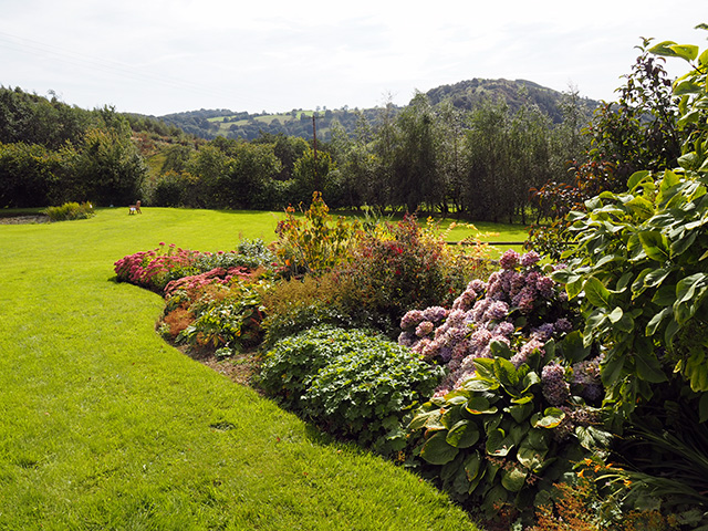 The garden at Bryncelyn.