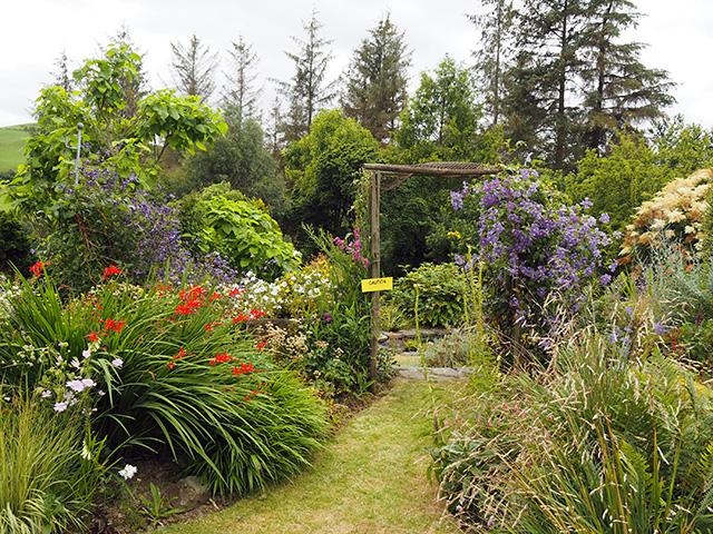 Fraithwen garden.
