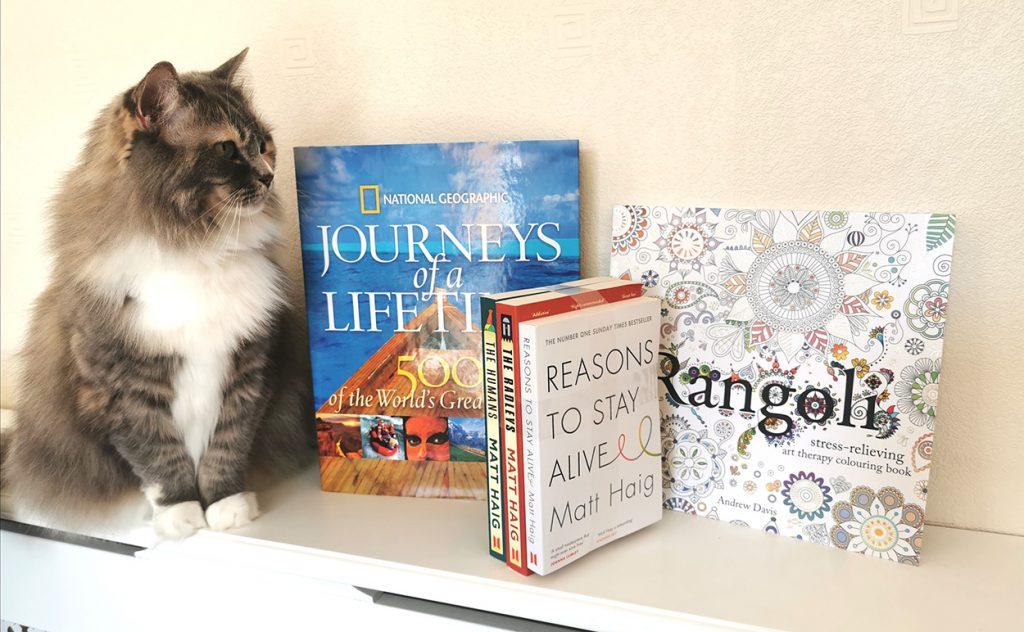 Sugar the cat posing with my books from Book2Door!