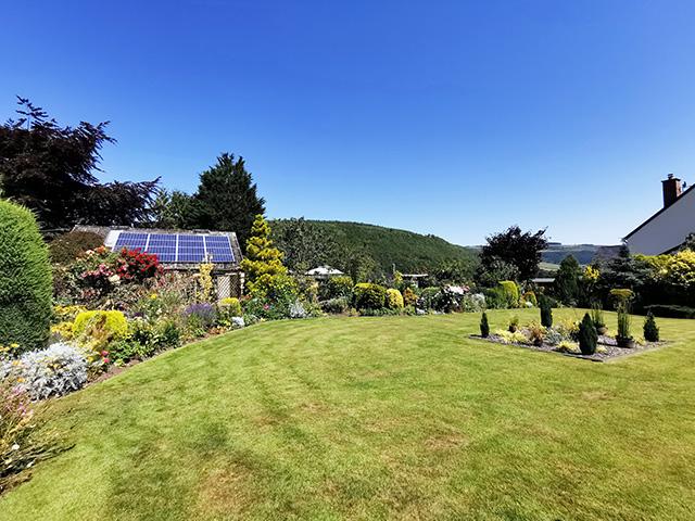 The back garden.