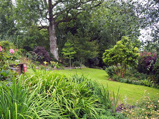 The garden at Rock House.