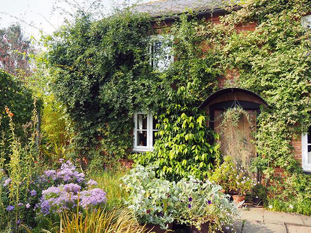 The cottage garden.