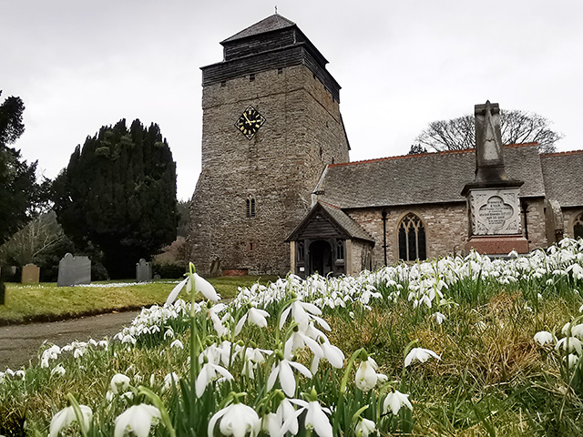 Snowdrops in front of the church.