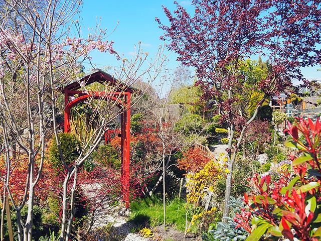 Winding path through the garden.