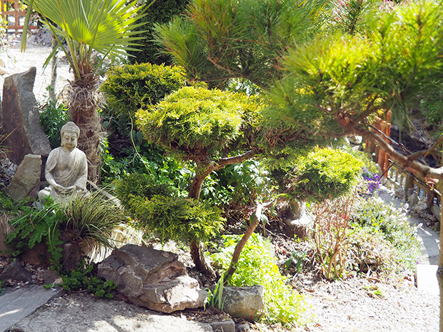A statue and plant at Tranquility Haven.
