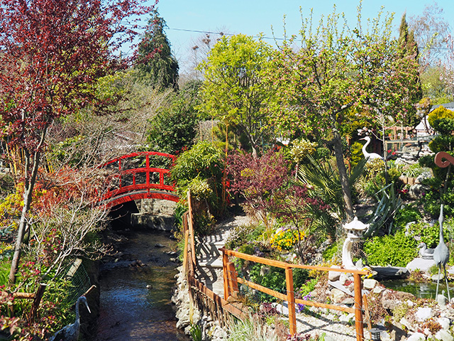 The stream flowing through the garden at Tranquility Haven.