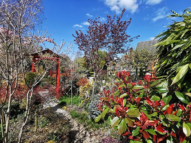 A path through the garden.