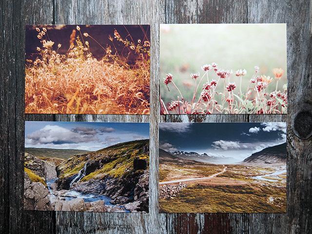 A set of 4 postcards.